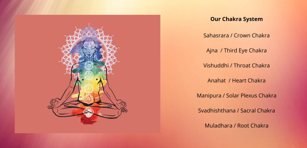 Chakra System 3 1024x493 - Our Chakra System
